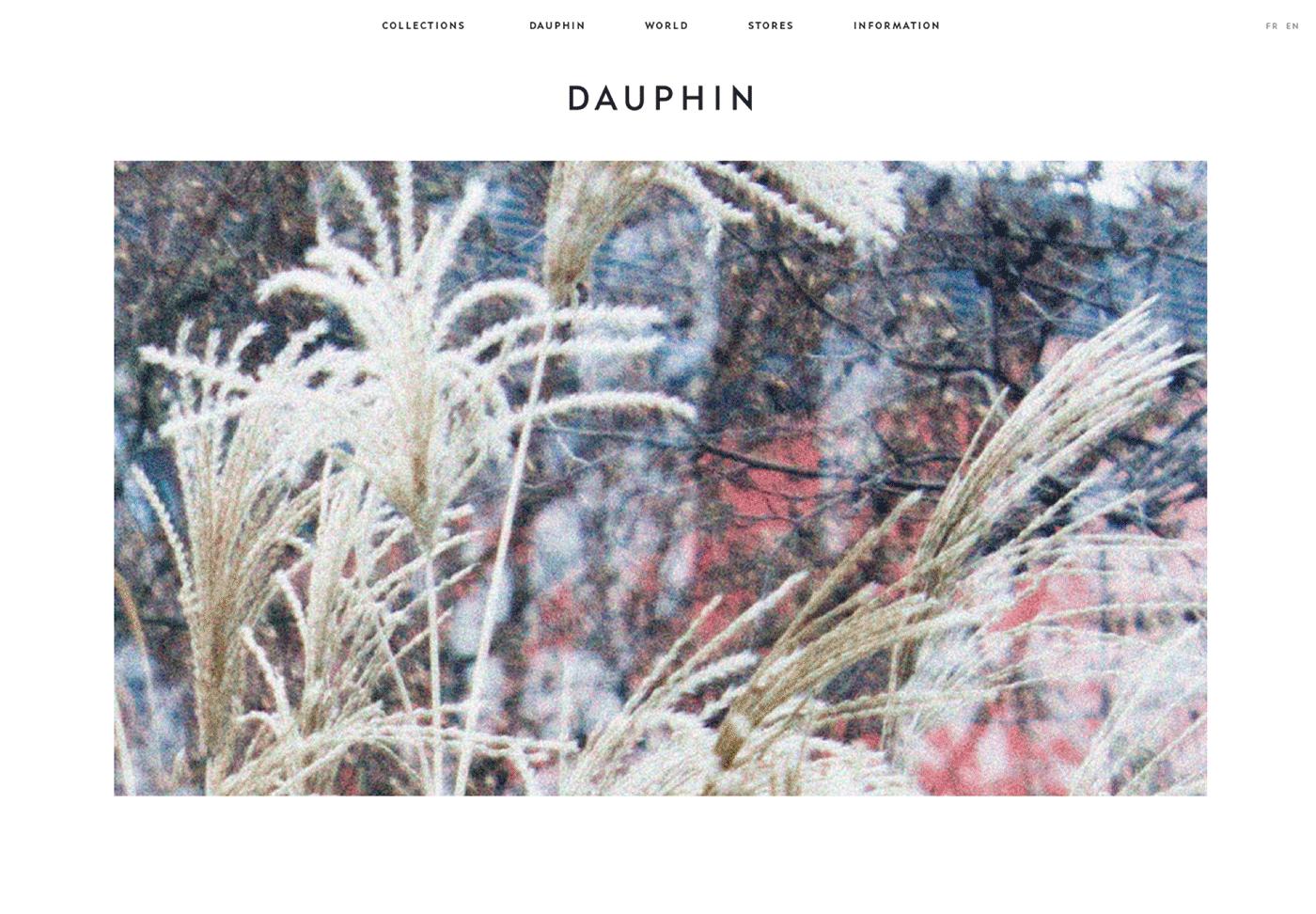 Dauphin Desktop